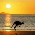 20 Interesting And Funny Facts About Australia