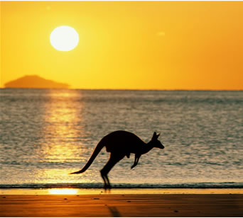 20 Funny Facts About Australia