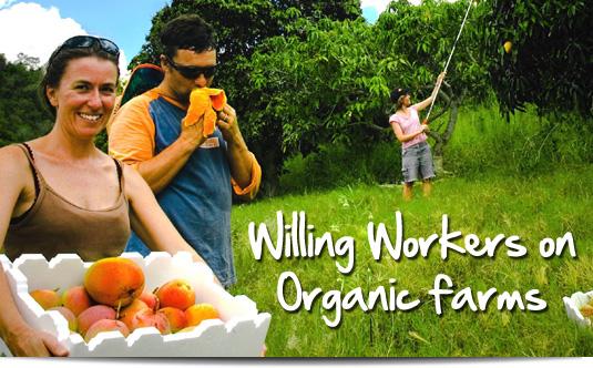Regional work guide in Australia