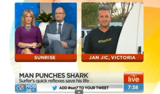 Surfer punches a shark and keeps surfing YouTube