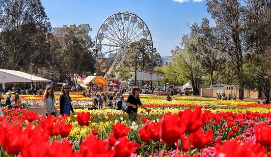 Photos and videos by Floriade Australia floriadeaust