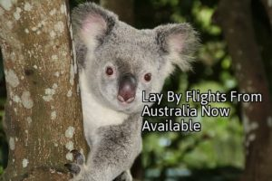 lay by flights from Australia now available