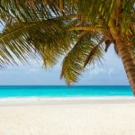 Hawaii, Bali and New Zealand Packages Now Available
