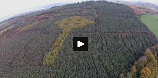 Mysterious Celtic cross discovered in Donegal forest