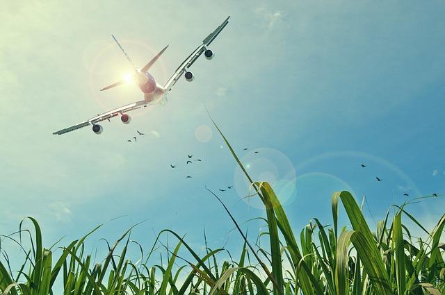 return flights to Ireland